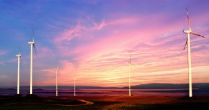 Windmills at Sunset 01