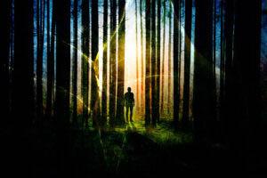 Surreal Apocalyptic Woods 01