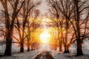 Wintery Road 01